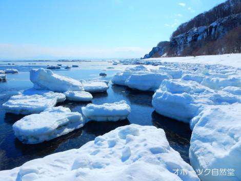 今日の流氷
