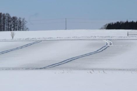畑に融雪剤