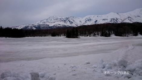 知床五湖2湖