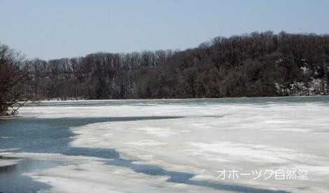 網走湖の今